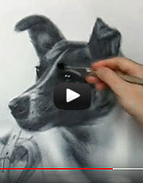 Laika Space Dog drawing video